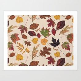 Aurora Autumn Art Print