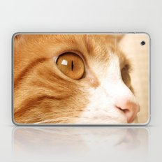 My cat Laptop & iPad Skin