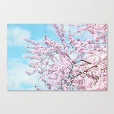 Blue Sky Cherry Blossom Floral Tree Canvas Print