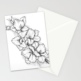Gladiola Stationery Cards
