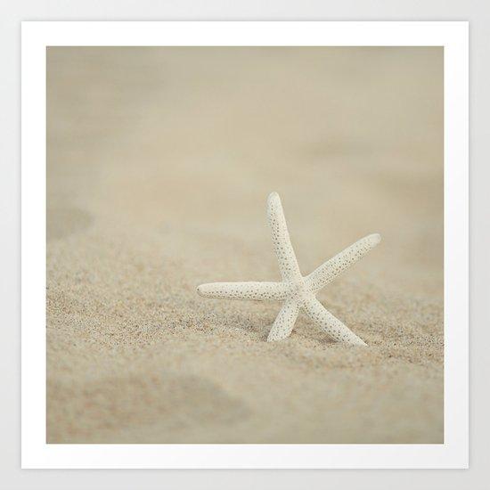 Starfish  Art Print
