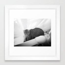Neeko Framed Art Print