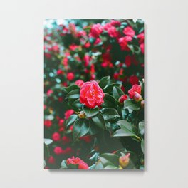 The Flowers (Color) Metal Print