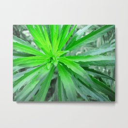 Burst in Green Metal Print