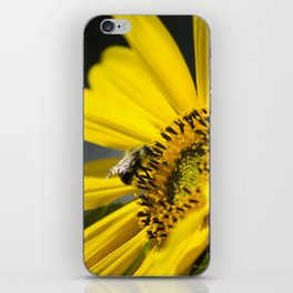 Sunflower and Bee iPhone Skin