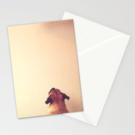 Pug staring up the wall Stationery Cards