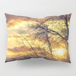 Sunshine Scattered Pillow Sham