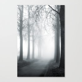 Mist and Mystery Canvas Print