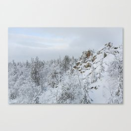 Winter Mountain Canvas Print