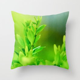 Green Harmony Throw Pillow