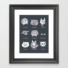 LOLcat Taxonomy Framed Art Print