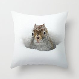 Cute Pop-up Squirrel in the Snow Throw Pillow