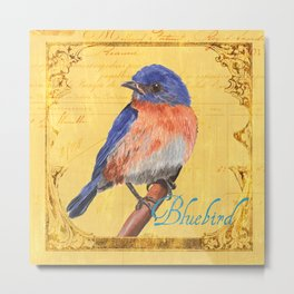 Songbird 1 Metal Print