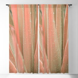Pink aloe Blackout Curtain