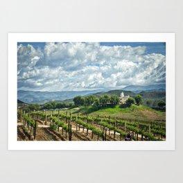 Vineyards, Temecula, CA Art Print