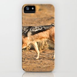 Black backed jackal * South Africa * Photography iPhone Case