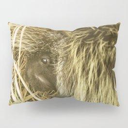 Porcupine Hiding Pillow Sham