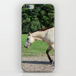 Off On A Trot iPhone Skin