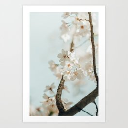 Branching Out Art Print