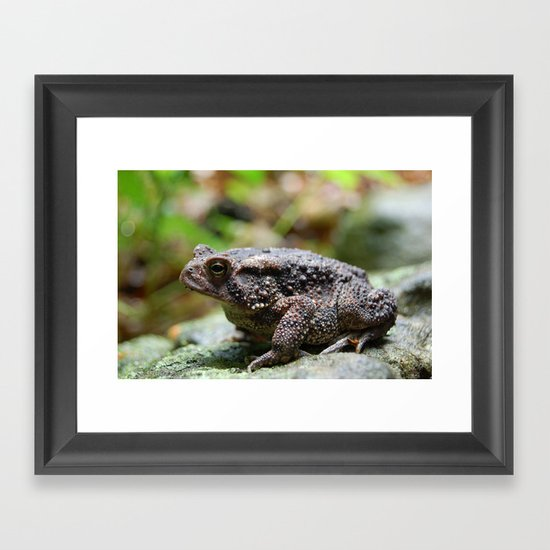 Living Stone Framed Art Print