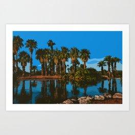 Papago Park Palms Art Print