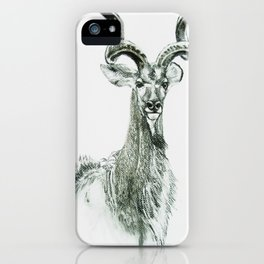 Prime of Life: Kudu Bull iPhone Case