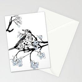 Mistle Thrush. Stationery Cards