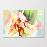 water colour Canvas Prints featuring Water colour parrot tulip by thea walstra