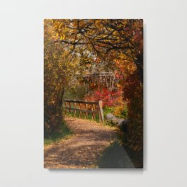 path of many colours Metal Print