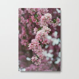 Pink Season Florale Metal Print