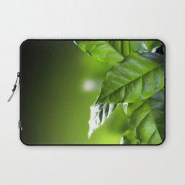 Coffee Arabica Plant Green Leaves Macro Close Up Laptop Sleeve