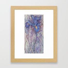 A Song About Iris #3 Framed Art Print