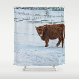 Are you looking at me, Scotish Highland Cow Shower Curtain