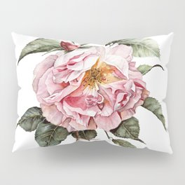Wilting Pink Rose Watercolor Pillow Sham