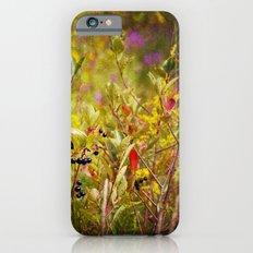Fall Field iPhone 6 Slim Case