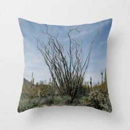Ocotillo Desert Throw Pillow