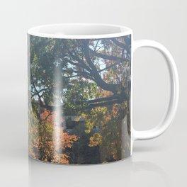 A Fall Day Somewhere in Ohio Coffee Mug