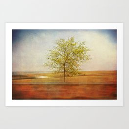 Lonely tree.I Art Print