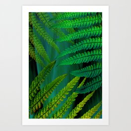 Forest Fern Green Art Print