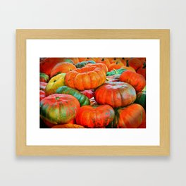 Heirloom Pumpkins Framed Art Print