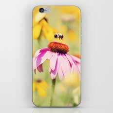 Busy Bee iPhone & iPod Skin