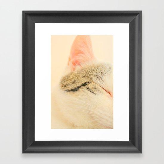 Peachy Kitty Framed Art Print