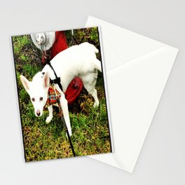Leave Your Mark Stationery Cards