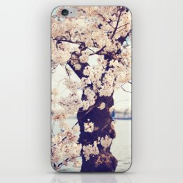 Cherry Tree in bloom iPhone Skin