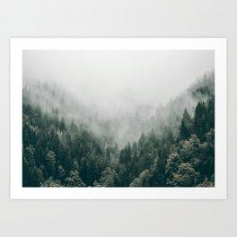 Foggy Forest 3 Art Print
