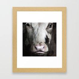 Bullock Framed Art Print