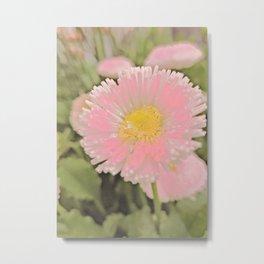 The Singular Beauty Of A Daisy Metal Print