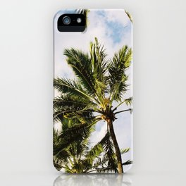 Palm tree in Cairns iPhone Case