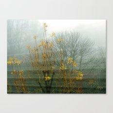 Intense Fog Canvas Print