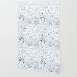 White winter glacier icelandic landscape photography Wallpaper